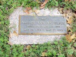 Alison Ann Ali Anderson