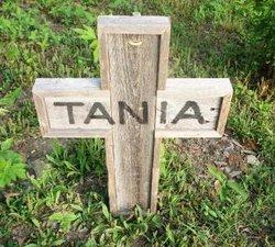 Tania Allen