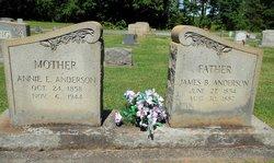 Annie Eliza <i>Anderson</i> Anderson