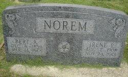 Irene R Norem