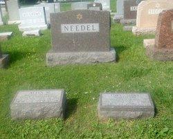 Alvin M Needel