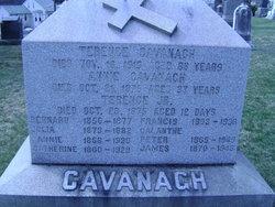 Annia Cavanagh