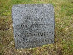 Mary Ann <i>DeGear</i> Carroll