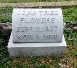 John Trigg Flowers