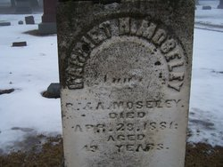 Harriet Newell Moseley