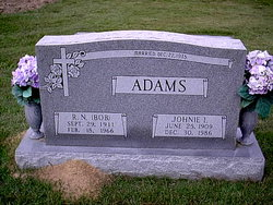 Robert Newell Adams