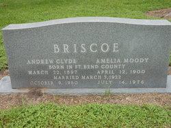 Andrew Clyde Briscoe
