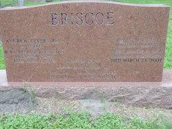 Andrew Clyde Briscoe, Jr
