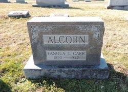 Fanola Grey <i>Carr</i> Alcorn