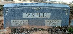 Agnes <i>Cooke</i> Wallis