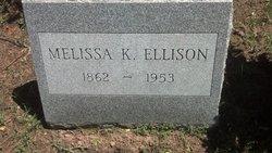 Mellissa S Ellison