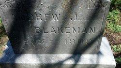 Andrew J Blakeman