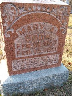 Mary Ann <i>Cooney</i> Cook