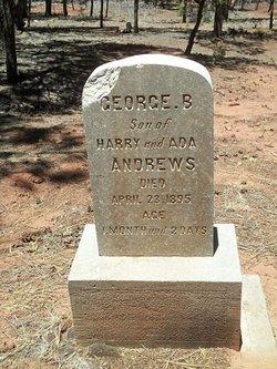 George B Andrews