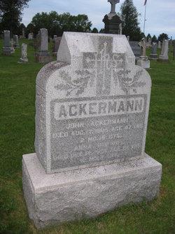 Anna <i>Lippert</i> Ackermann
