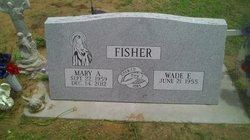 Mary Ann <i>May</i> Fisher