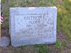 Elijah Anthony