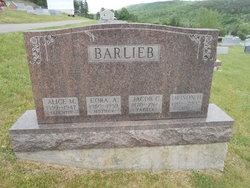 Jacob C Barlieb
