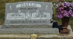 Fidel Gallo