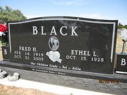 Fred Harold Black