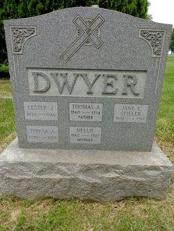Lester J Dwyer