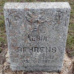 Albin Behrens
