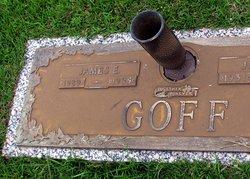 James E Goff