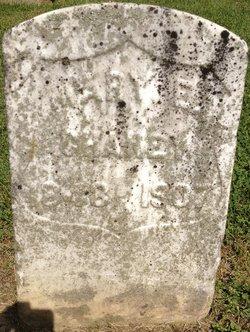 Mary Elizabeth <i>Wilkin</i> Chaney