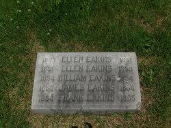 Frank Eakins