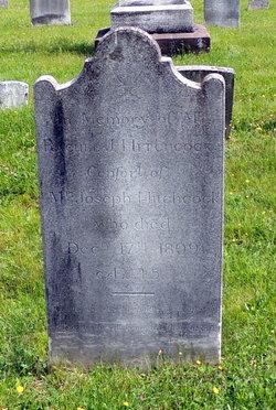 Rachel J Hitchcock