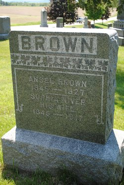 Ansel Brown