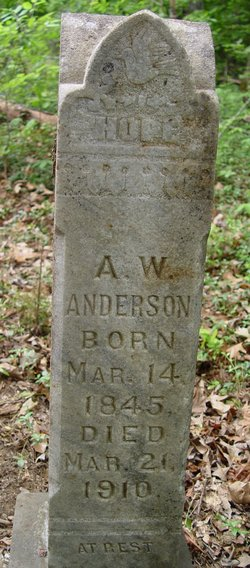 Abraham W. Anderson