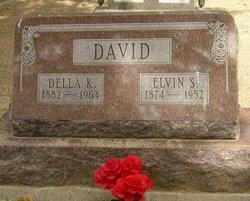 Della K David