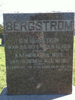 Carl M Bergstrom