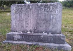George Washington Brinsfield