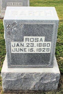 Rosa <i>Koehler</i> Barth