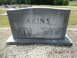 Arthur H Akins