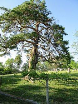Medicineville Cemetery