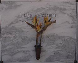 Julian J Bertaina