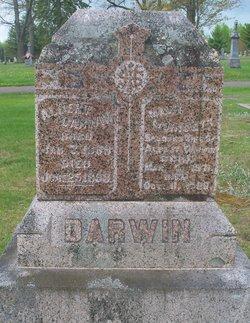 Albert Darwin