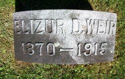 Elizur Davis Weir