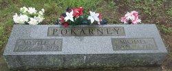 Michael Mike Pokarney