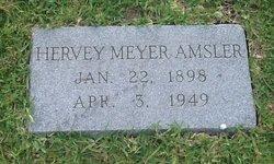 Hervey Meyer Amsler
