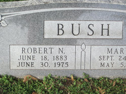 Robert N Bush