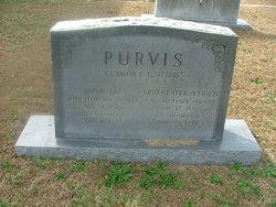 Ernest Ottoweihld Purvis