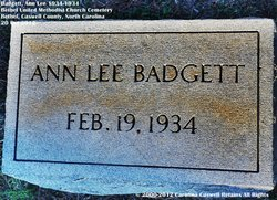 Ann Lee Badgett