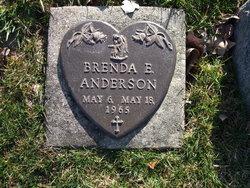 Brenda E Anderson