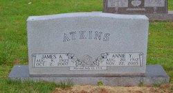 Annie Y. Atkins
