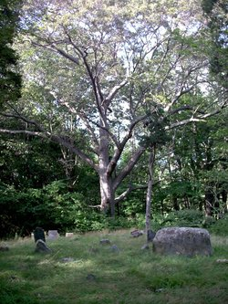 Eddy Burial Ground