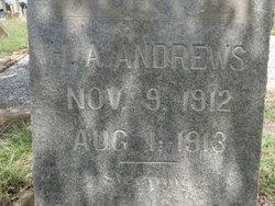 Hazel Annis Andrews